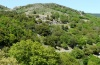 Papilio hospiton: Habitat on a wood-rich slope in the central mountains of Sardinia (May 2012) [N]